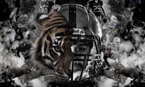 Titelblatt_Tiger